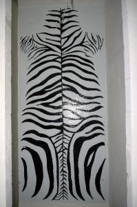 zebra_04